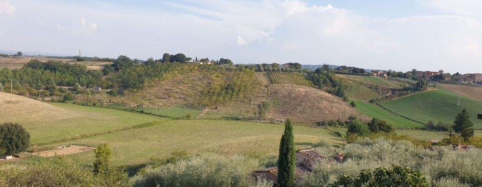 Vendita Casale/Rustico VENDESI a pochi km da Siena, prima di San Rocco a Pilli, intero casale su tre piani con ampio...