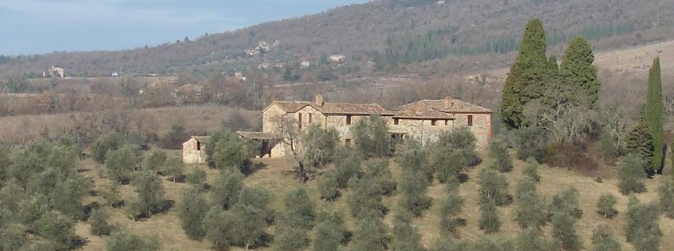 Vendita Casale/Rustico CHIANTI. Vendesi, bellissimo complesso colonico da restaurare nello splendido scenario del Chianti....